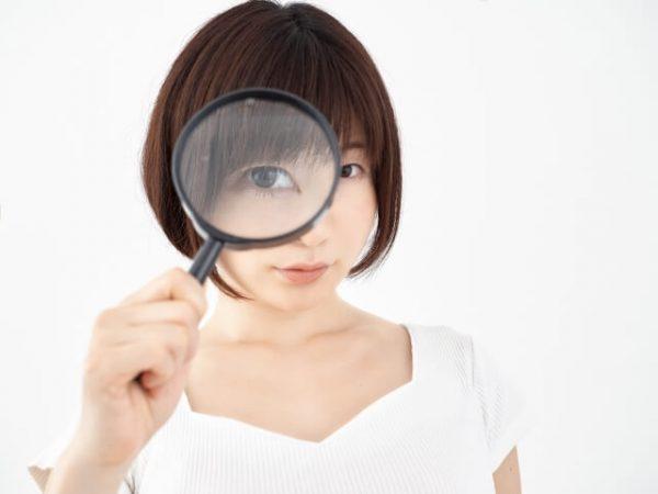 規約から読み解く、個人信用情報以外の「レイクALSA」参照情報