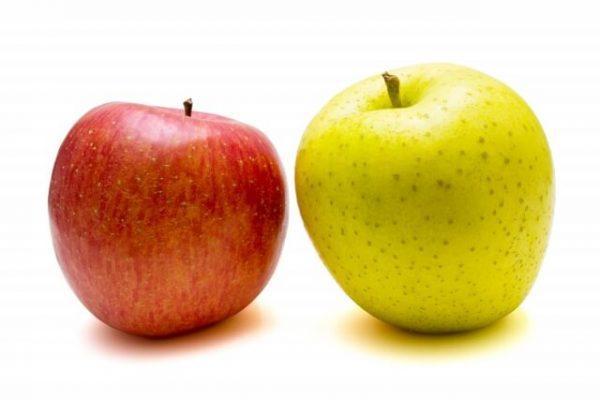 「レイクALSA」の主要申し込み・契約方法は2種類、あなたに合っているのはどっち?