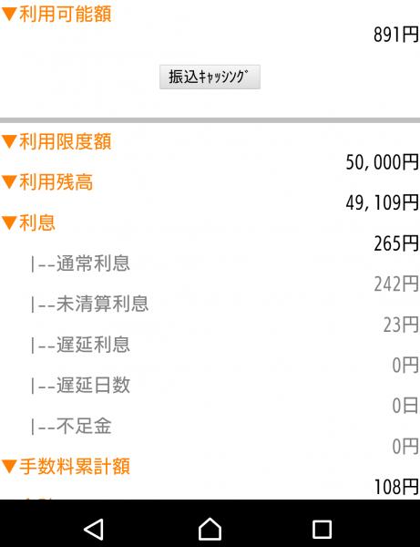 利用限度額5万円